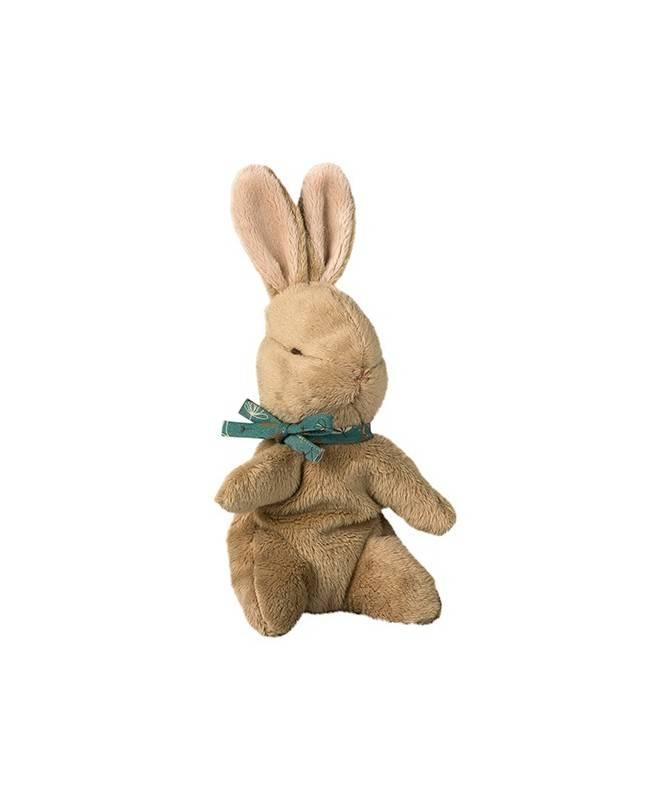 Bébé lapin avec ruban bleu