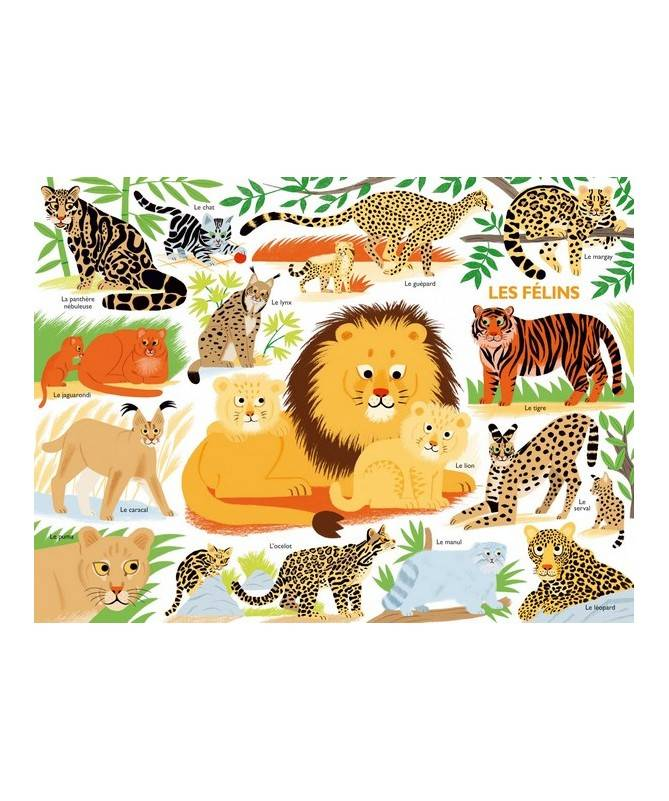 Livre Mon tour du monde géant des mammifères